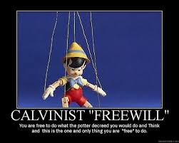 calvinistfreewill